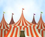 Circus Parties