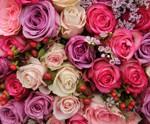 Flowers - Florist