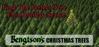 Visit Bengtson's Christmas Tree Farm In Peotone Ilinois Save $5.00