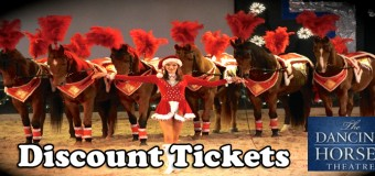 The Dancing Horses Theatre Holiday Extravaganza!