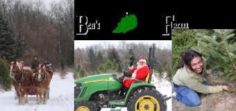 Ben's Christmas Tree Farm