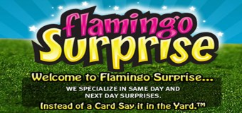 Flamingo Surprise Yard Sign Rentals Coupon