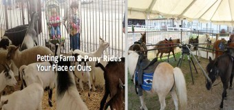 Forest View Farms Petting Zoo & Pony Rides