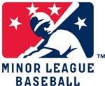 Minor League Baseball Chicago