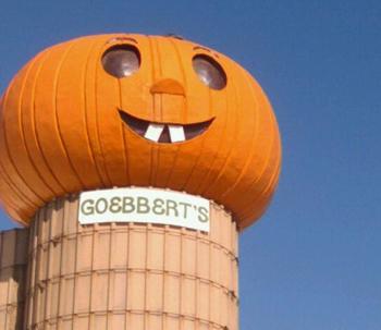 Goebberts Pumpkin Farm South Barrington