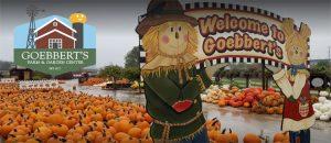 Goebberts Barrington Fall Festival