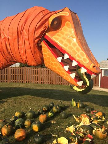 pumpkin patches near joliet il