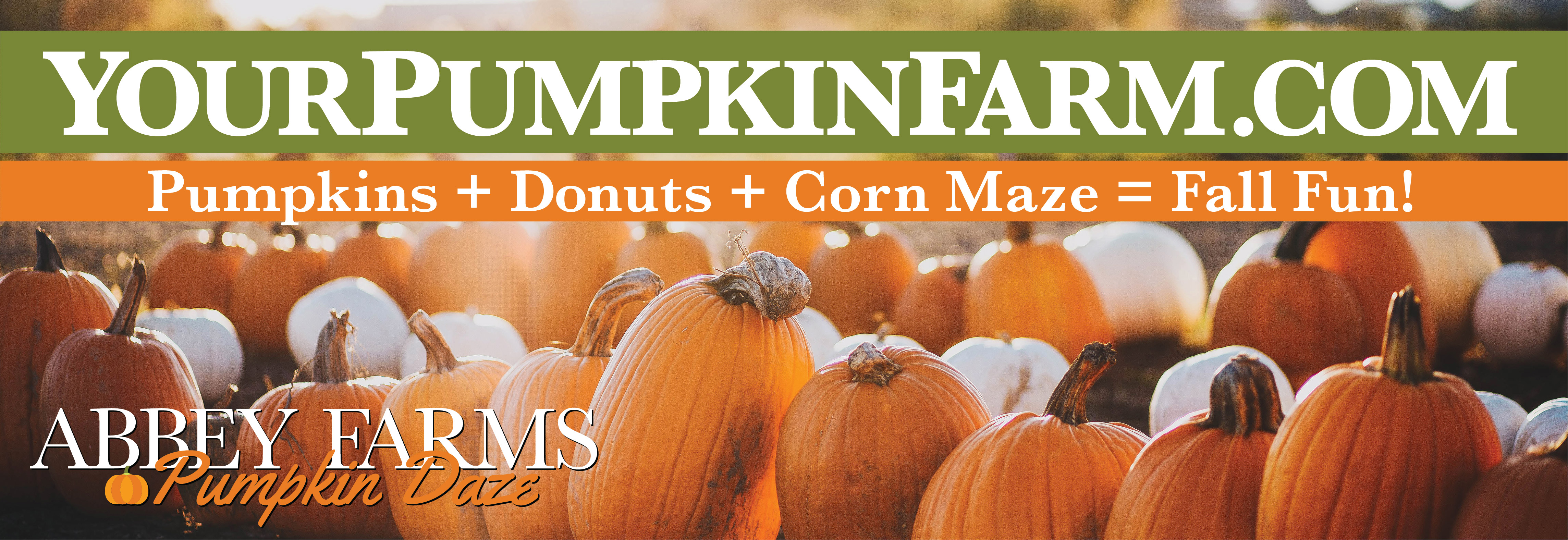 Abbey Farms of Marmion Abbey Pumpkin Daze