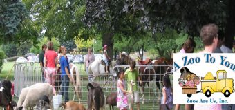A Zoo To You Pony Wheel Rental