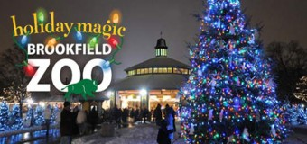 Brookfield Zoo Holiday Lights Magic Discount Tickets