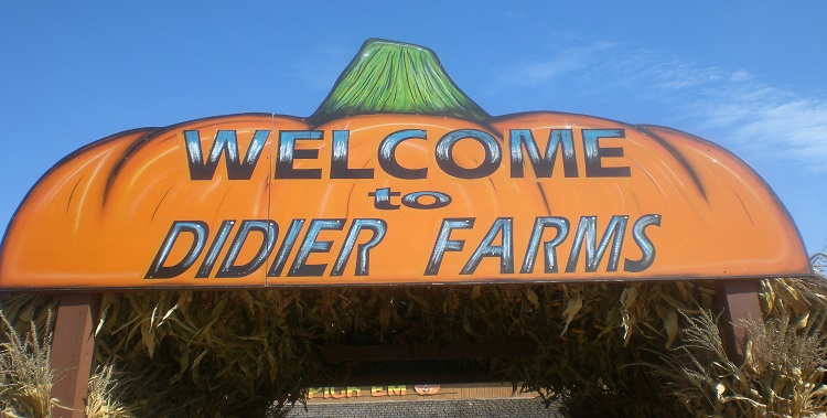 Didier Farms Pumpkin Fest