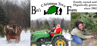 Ben's Christmas Tree Farm