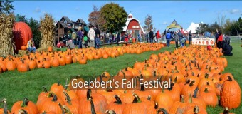 Goebbert's Fall Festival South Barrington
