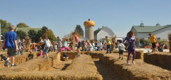 Goebbert's Pumpkin Patch and Apple Orchard Hampshire