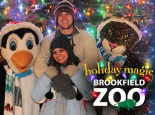 Brookfield Zoo Holiday Lights Magic