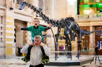 Chicago Museums Guide