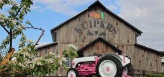 Kuipers Family Farm Apple Orchard