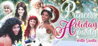 Princess Holiday Party at the Castle Saturday, November 25th