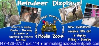 Santa's Village Azoosment Park Live Reindeer Display Delivered To You