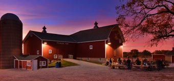 Experience Farm Life At Primrose Farm