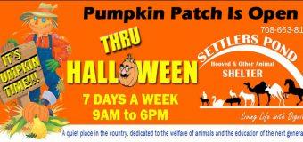 Settler's Pond Animal Shelter Pumpkin Patch & Fall Festival