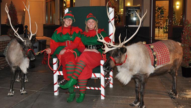 Summerfield Farm Reindeer Rental
