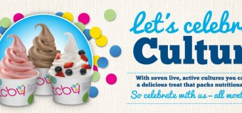 TCBY Chicago Deal