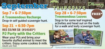 Thursdays are Tree-Mendous at Hickory Knolls Discovery Center